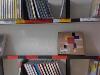 Übersichtliche Gestaltung des CD-Regals mit farbigen Bändern
