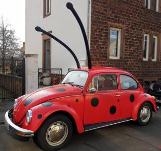 Ein VW Käfer als Marienkäfer verkleidet
