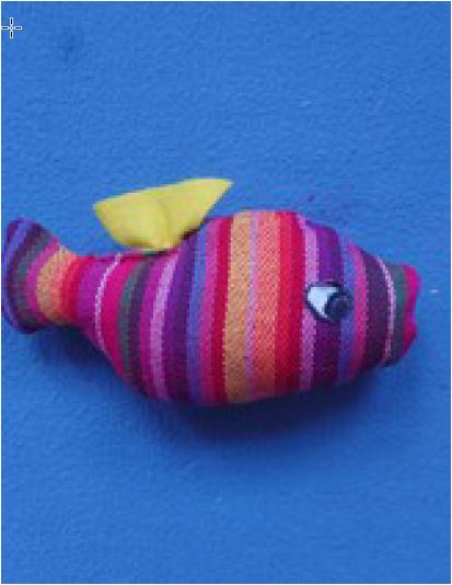 Regenbogen-Fisch