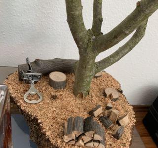 Holzbrett für Bierbaum